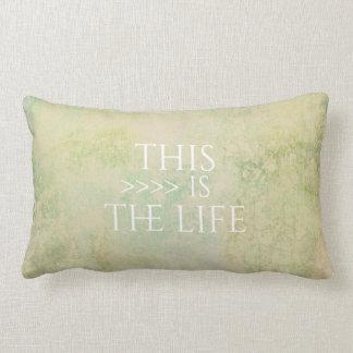 Almofada Lombar cores pastel do travesseiro do acento das citações