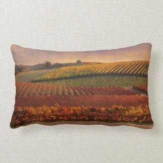 Almofada Lombar Decoração bonita do travesseiro decorativo do