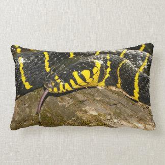 Almofada Lombar Dendrophila de Boiga ou cobra dos manguezais