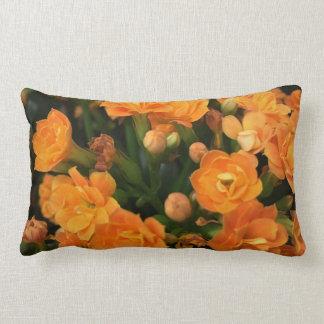 Almofada Lombar Do travesseiro decorativo do algodão, travesseiro