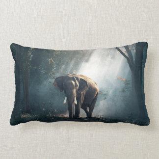 Almofada Lombar Elefante asiático em um esclarecimento Sunlit da