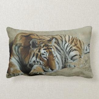 Almofada Lombar Foto impressionante do gato grande do tigre