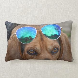 Almofada Lombar Lebreiro legal com os óculos de sol na cabeça