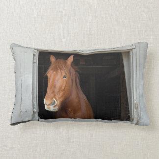 Almofada Lombar O cavalo de um quarto da castanha que espera para