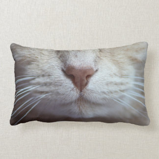 Almofada Lombar O coxim do gato, humor