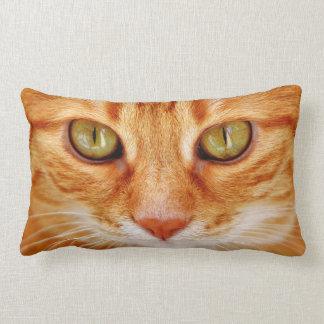 Almofada Lombar Os olhos de gato