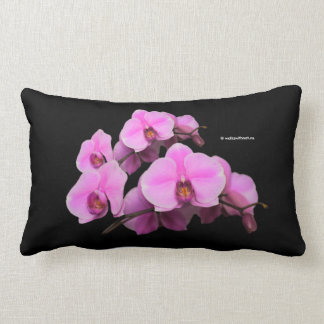 Almofada Lombar Phalaenopsis cor-de-rosa elegante das orquídeas no