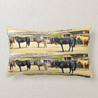 Almofada Lombar Quatro cavalos e um travesseiro lombar poli do