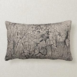 Almofada Lombar Textura legal da terra rachada