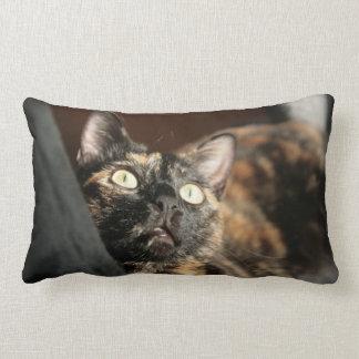 Almofada Lombar tortie cat pillow