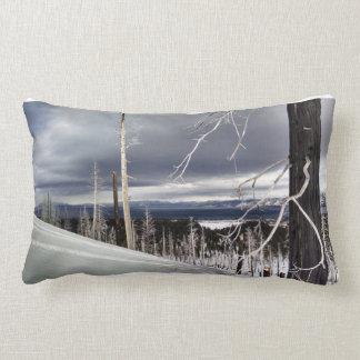 Almofada Lombar Travesseiro da cabine do lago
