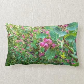 Almofada Lombar Travesseiro decorativo de Saskatoon, travesseiro