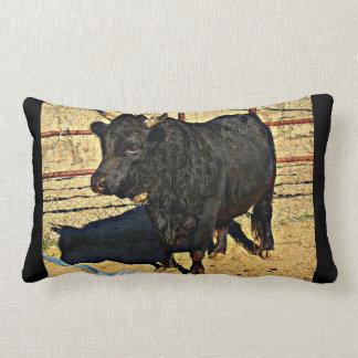 Almofada Lombar Travesseiro decorativo do acento de Bull do bebê