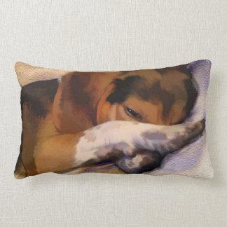 Almofada Lombar Travesseiro decorativo preguiçoso do lebreiro