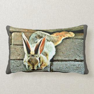 Almofada Lombar Travesseiro feito sob encomenda do coelho do sono