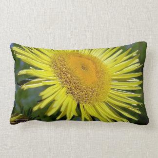 Almofada Lombar travesseiro lombar 13x21 do travesseiro decorativo