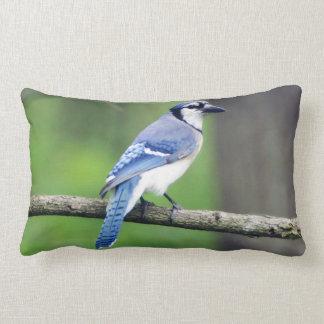 Almofada Lombar Travesseiro lombar azul de Jay
