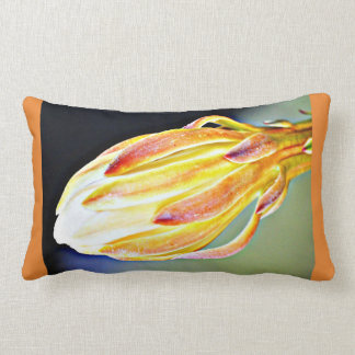 Almofada Lombar Travesseiro lombar da flor do cacto