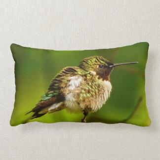Almofada Lombar Travesseiro lombar do colibri Throated do rubi