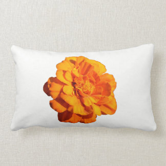 Almofada Lombar Travesseiro lombar do cravo-de-defunto