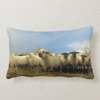 Almofada Lombar Travesseiro lombar do rebanho dos carneiros