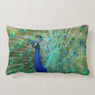 Almofada Lombar Travesseiro maravilhoso do pavão