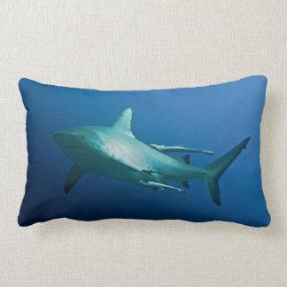 Almofada Lombar Tubarão cinzento do recife no grande recife de