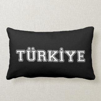 Almofada Lombar Türkiye