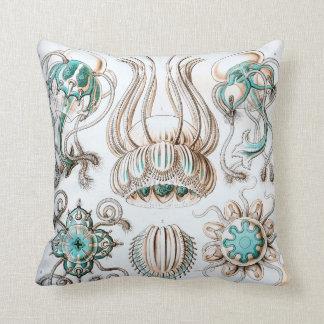 Almofada Medusa de Ernst Haeckel Narcomedusae!