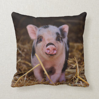 Almofada mini porco