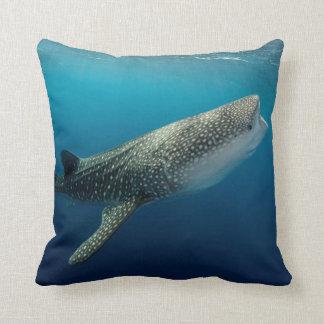 Almofada Natação do tubarão de baleia