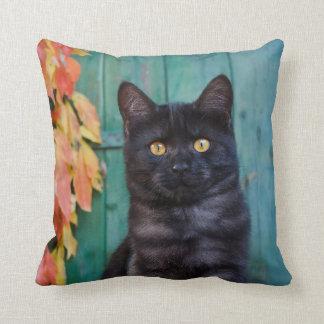 Almofada O gatinho bonito do gato preto com vermelho sae da