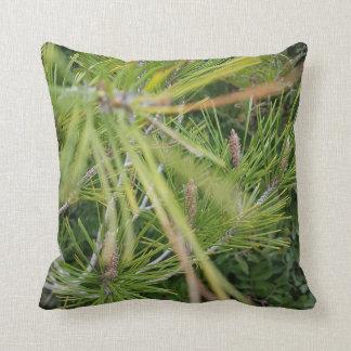 Almofada o pinho verde sae bonito e refrescar