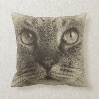 Almofada Olhos de gatos