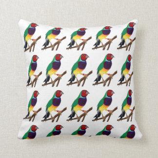 Almofada ~ original da arte do ~ do passarinho de Gouldian