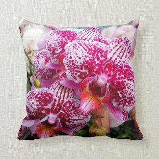 Almofada Orquídeas cor-de-rosa do Dendrobium