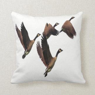 Almofada Os gansos canadenses que voam em um rebanho caçoam