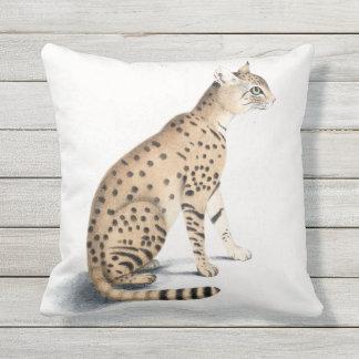 Almofada Para Ambientes Externos Travesseiro decorativo exterior de Ornata do gato