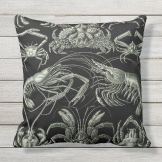 Almofada Para Ambientes Externos Travesseiro do impressão de Haeckel