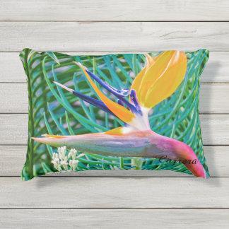 Almofada Para Ambientes Externos Travesseiro exterior, pássaro do design do paraíso