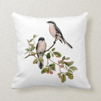 Almofada Pássaros bonito do vintage em um ramo