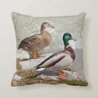 """Almofada Pato do pato selvagem - travesseiro decorativo 16"""""""