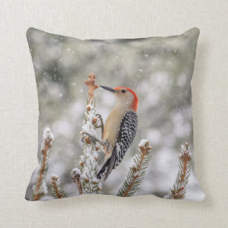 Almofada pica-pau Vermelho-inchado na neve