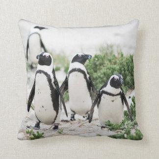 Almofada Pinguins na praia