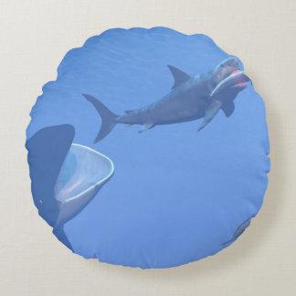 Almofada Redonda Baleias e megalodon subaquáticos - 3D rendem