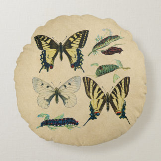 Almofada Redonda Borboletas, lagartas e traça de Swallowtail