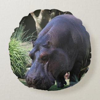 Almofada Redonda Hipopótamo