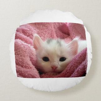 Almofada Redonda kitten-cat-fluffy-cat-cute-62321