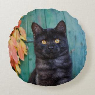 Almofada Redonda O gatinho bonito do gato preto com vermelho sae da