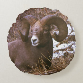 Almofada Redonda Ram do Bighorn